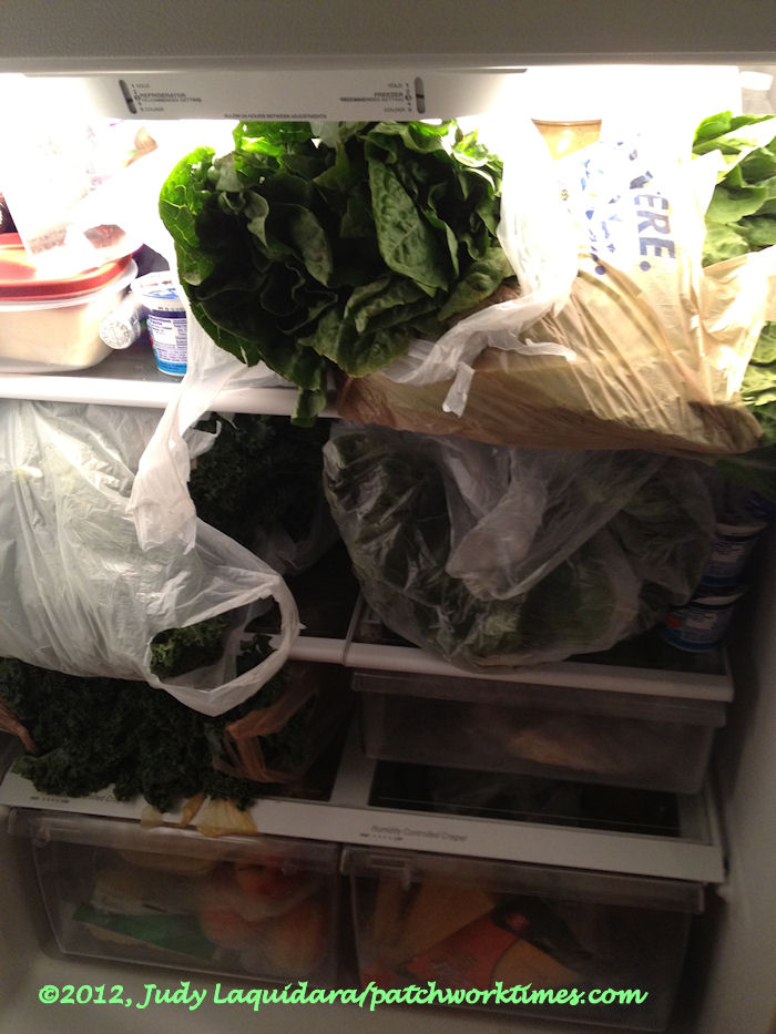 Kale – How Much is Too Much