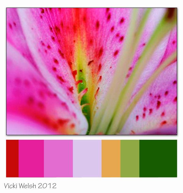 June Color Palette Challenge
