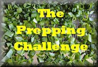 Preparedness Challenge Coming Soon