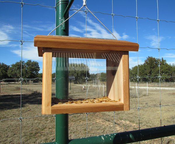 Bluebird Feeders