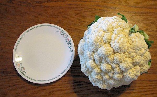 Texas Sized Cauliflower