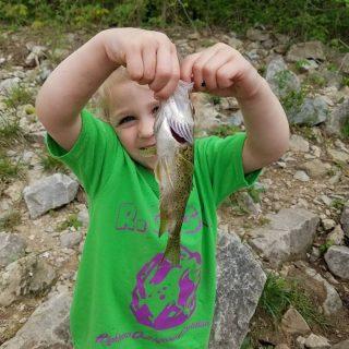 The Little River Rat