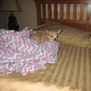 Rita Was Ready for Bed