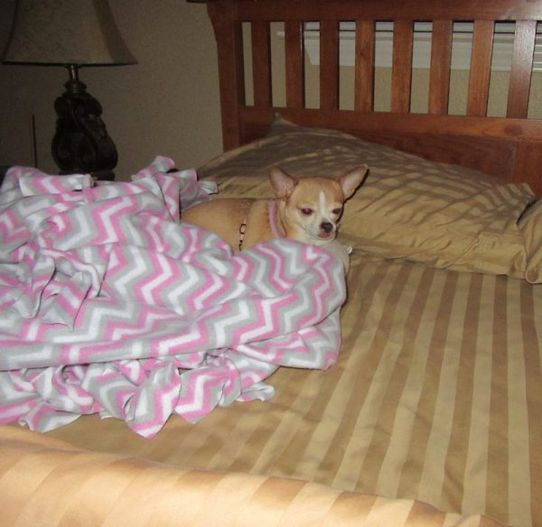 Rita in Bed