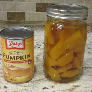 What's In Your Pumpkin Pie