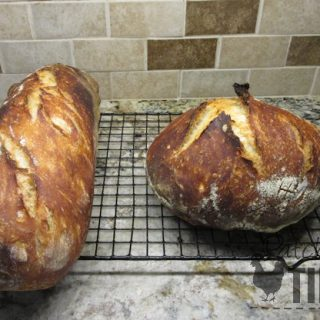 The Sourdough Bread