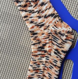 Calico Cat Socks