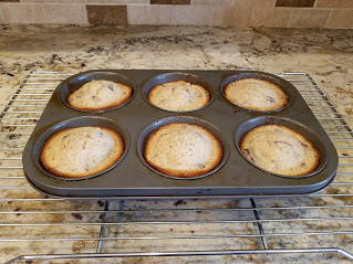 Steve's Fig Muffins