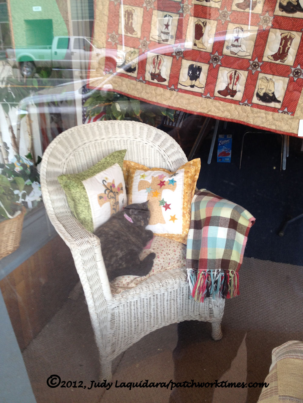 How Much Is The Kitty In The Window?