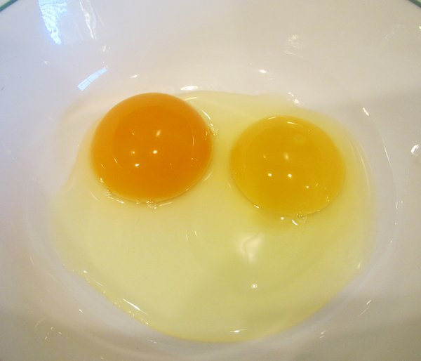 The Tale of Two Eggs