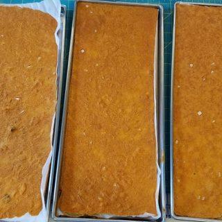 Freeze Dried Tomato Soup